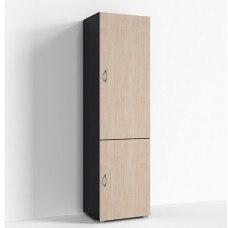 Шкаф две двери 500х400x1820 мм (ДхГхВ) (Цвет на выбор)